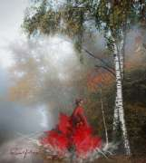 flamenco_e_nebbia.jpg